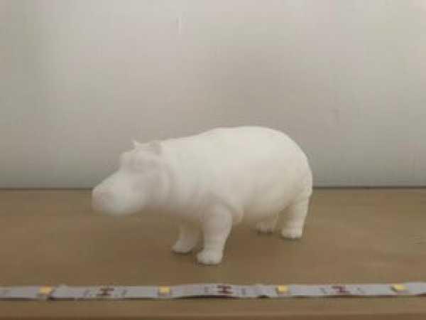 Hippo  Biblo Dekoratif Hediyelik Süs Eşyası Maket Aksesuar