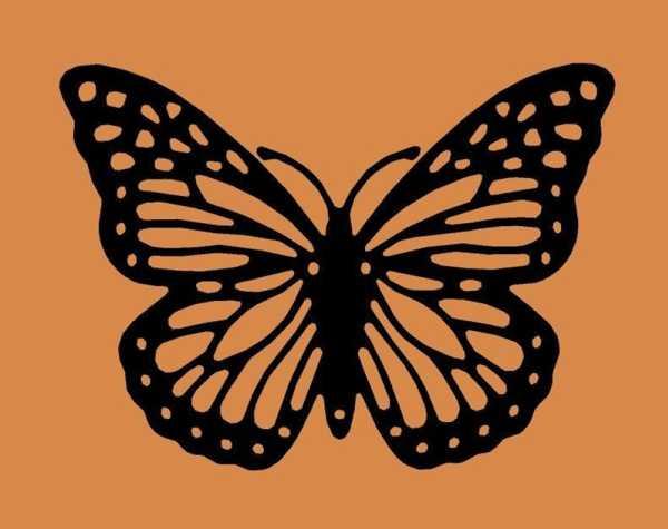 Kelebek 69 Plastik Aparat