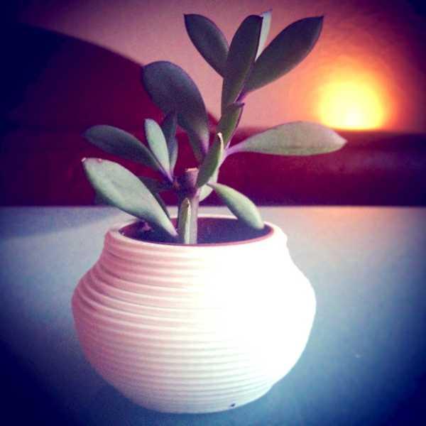 Saksı Süslü Çiçek Bitki Dekor Kalemlik Hediyelik Süs Eşyası