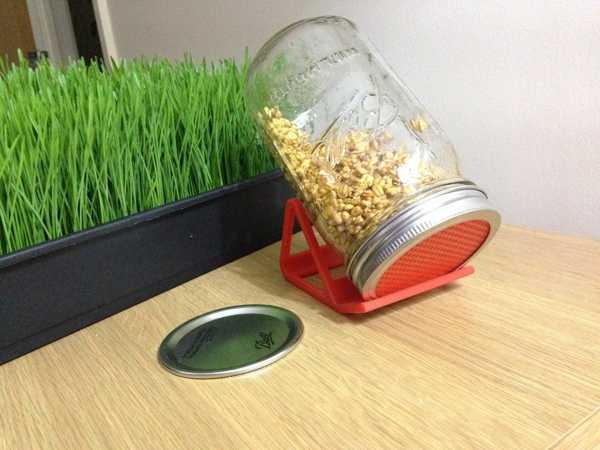 Sprouter - Kapak Süzgeç Ve Stand  Organik Plastikten Organizer