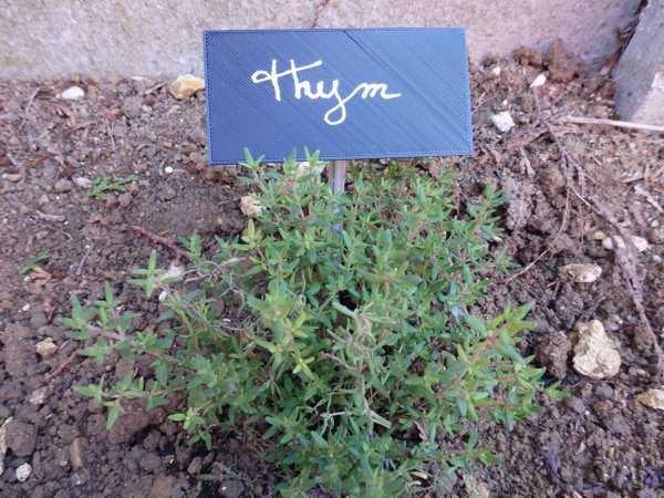 Bahçe / Etiquette İçin Görgü Kuralları Le Jardin Plastik Aparat