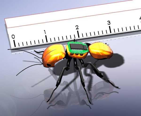 Karınca Başı Plastik Aparat